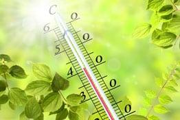 Hitze Landwirtschaft