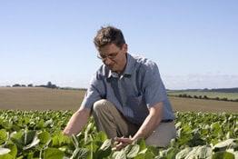 Berufsunfähigkeit Landwirt