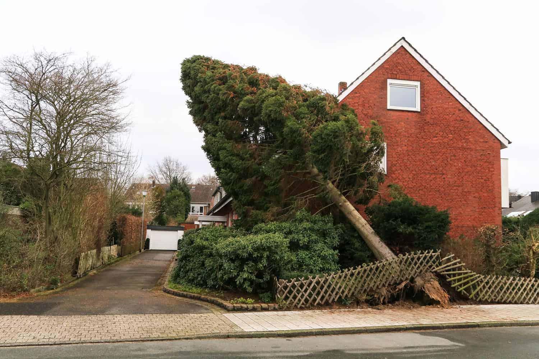Sturmschadenversicherung Wohngebäude
